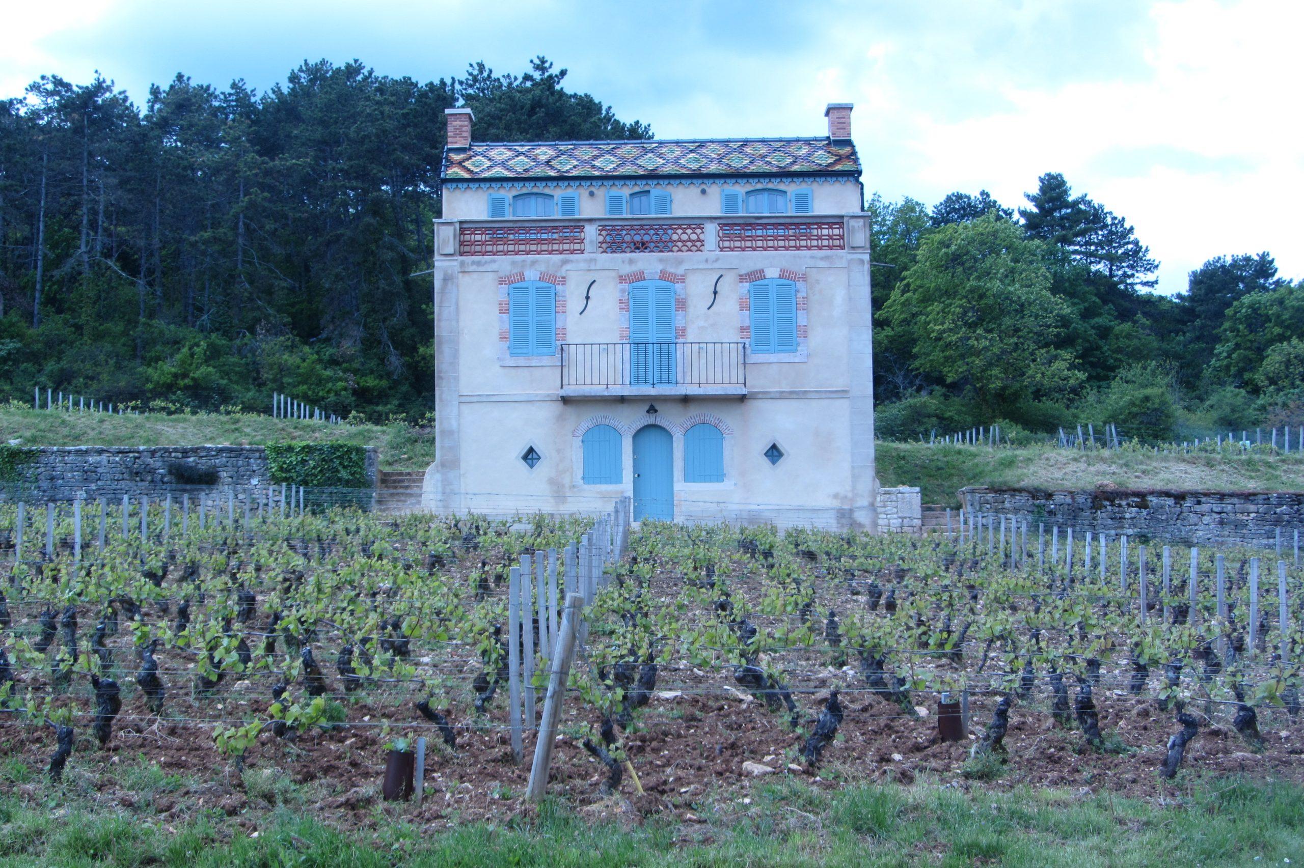 Edifice bourguignon en Côte de Nuits.