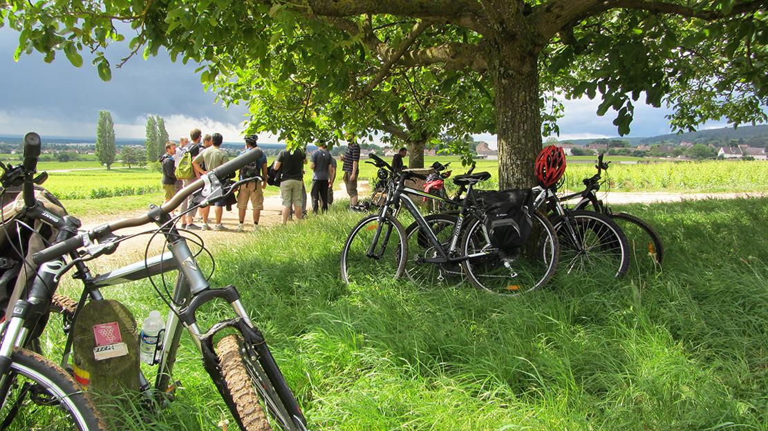 EVG-Bourgogne-Balade-vélo-vignoble-